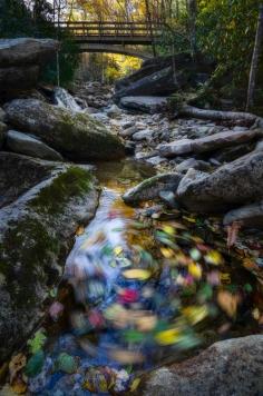 Boone Fork Swirl