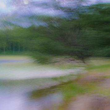 19-08-Bass Lake-34